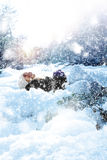 Neve do jogo foto de stock royalty free