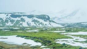 Neve do mau tempo de Islândia e fundo do mountaitn da névoa, MOS verde fotografia de stock
