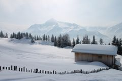 Neve do pó Imagens de Stock Royalty Free