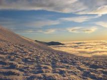 Neve dorata al crepuscolo Fotografie Stock