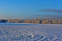 Neve e céu azul com nuvens e vara Fotos de Stock Royalty Free