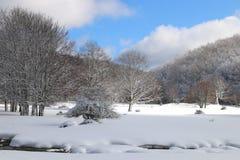 Neve e céu azul com nuvens e vara Fotografia de Stock Royalty Free
