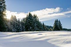 Neve e cielo blu con le nubi ed il bastone Fotografia Stock Libera da Diritti