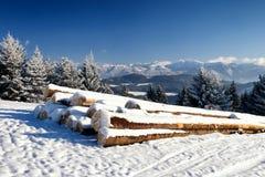 Neve e cielo blu con le nubi ed il bastone Immagine Stock Libera da Diritti