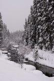 Neve e fiume Fotografie Stock Libere da Diritti