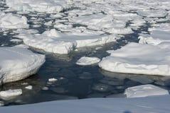 Neve e ghiaccio dell'Antartide. Immagine Stock Libera da Diritti