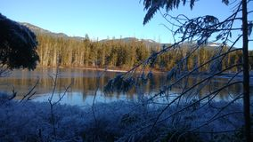 Neve e lago Foto de Stock Royalty Free