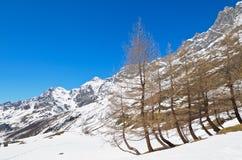 Neve e montains Fotografie Stock
