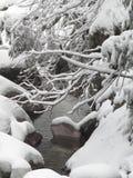 Neve e montanha Fotos de Stock Royalty Free