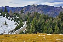 Neve e rocce dell'erba sulla parte superiore della montagna Immagini Stock Libere da Diritti