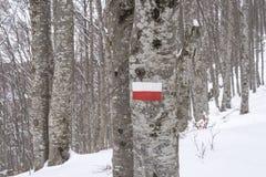 Neve e sinal da maneira direita na montanha Fotografia de Stock