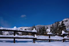 Neve e skys azuis foto de stock royalty free