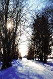 Neve e sol fotografia de stock royalty free