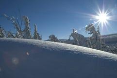 Neve e sol Imagens de Stock