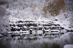 Neve ed acqua fotografia stock