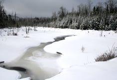 Neve ed alberi Immagini Stock