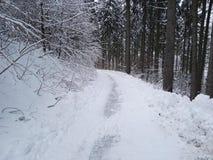 Neve em Alemanha Imagens de Stock Royalty Free