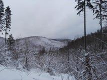 Neve em Alemanha Fotografia de Stock Royalty Free