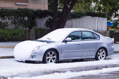 Neve em Israel. 2013. Fotografia de Stock Royalty Free