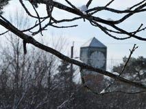 Neve em ramos, pulso de disparo de Westclox no fundo imagem de stock