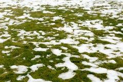 Neve em uma grama Imagens de Stock Royalty Free