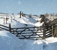 Neve em uma pista do país com portas e as cercas de madeira de queda da neve fotografia de stock