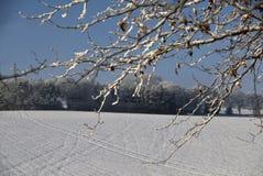 Neve em uma posição rural. Foto de Stock Royalty Free