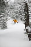 Neve esperta della polvere di corsa con gli sci dello sciatore in Stowe, Vermont, Immagini Stock