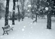 A neve está caindo Imagem de Stock Royalty Free