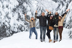 Neve Forest Happy Smiling Young People do grupo dos amigos exterior Imagem de Stock Royalty Free