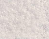 Neve fresca fotografia de stock