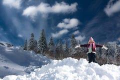 Neve fresca Imagens de Stock