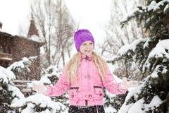 Neve fresca Fotografia Stock Libera da Diritti