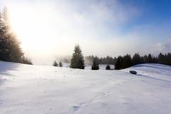 Neve fresca Immagine Stock
