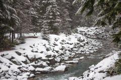 Neve fresca che cade sulle sponde del fiume e sugli alberi, Whistler, BC Fotografia Stock Libera da Diritti