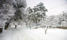 Neve fresca na cidade fotos de stock