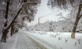 Neve fresca na cidade Imagem de Stock