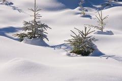 Neve fresca nas montanhas foto de stock royalty free