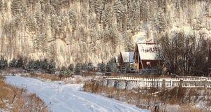 Neve fria da paisagem da floresta do inverno fotos de stock