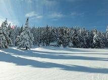Neve grande nas montanhas Imagem de Stock