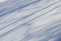 Neve - indicatore luminoso e schermo Fotografia Stock Libera da Diritti