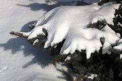 Neve, luz e máscaras Fotos de Stock Royalty Free