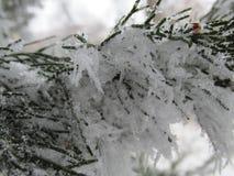 Neve macro no ano novo três Imagens de Stock Royalty Free