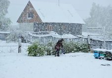 Neve a maggio Fotografia Stock