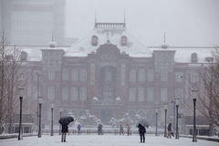 A neve a mais pesada nas décadas no Tóquio Fotos de Stock Royalty Free