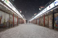 A neve a mais pesada nas décadas no Tóquio Imagens de Stock