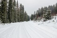Neve na estrada com as árvores no campo Foto de Stock Royalty Free
