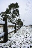 Neve na linha de cerca Imagem de Stock