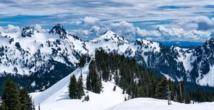 Neve na montagem Rainier National Park In Winter fotografia de stock