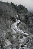 Neve na passagem e nas árvores de montanha Imagem de Stock Royalty Free